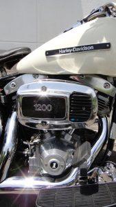 DSC08100
