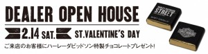 15_Valentinesday_DM_Atena