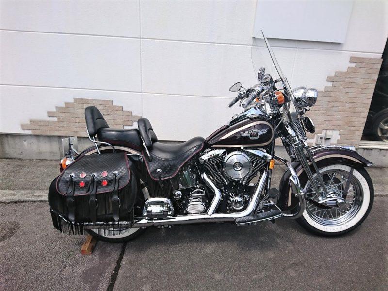 1998 Harley Davidson FLSTS 95th ANNIVERSARY MODEL